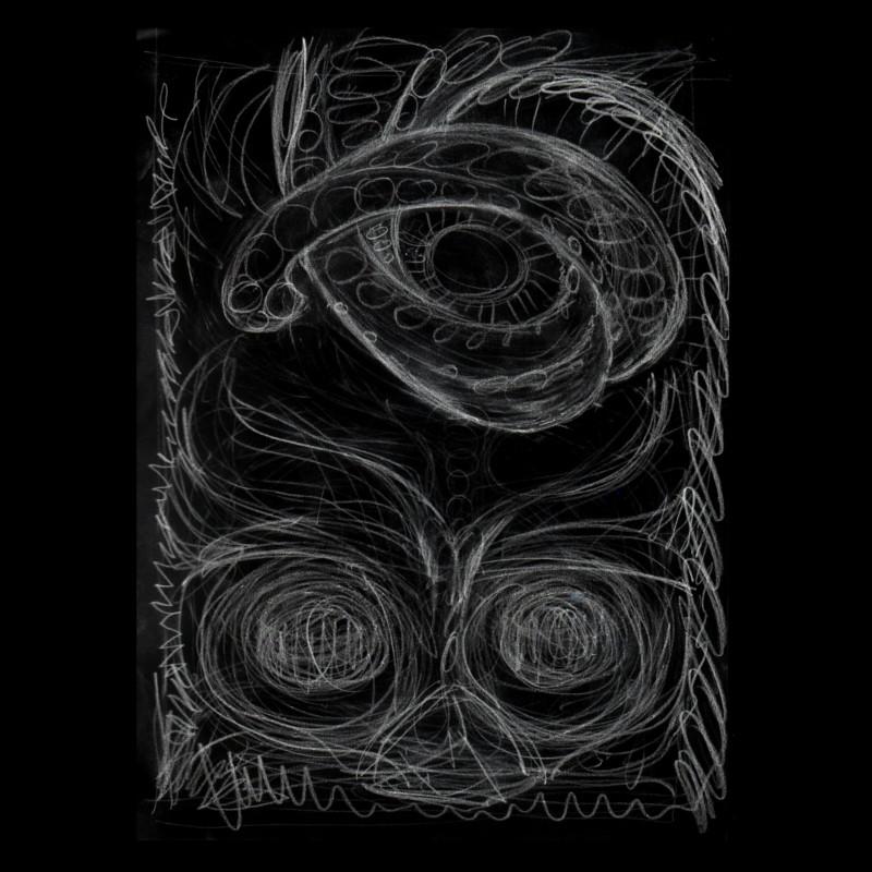 Owl Squid