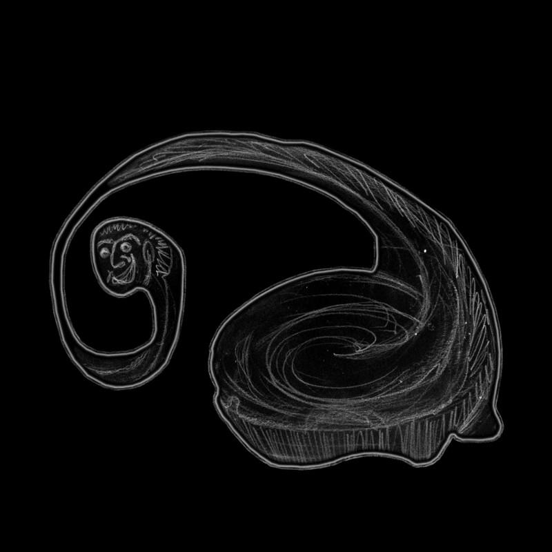 Snaily 224